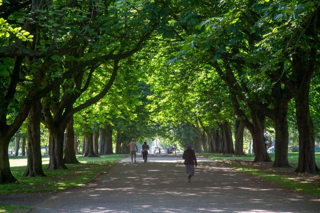 Albert Park, Middlesbrough