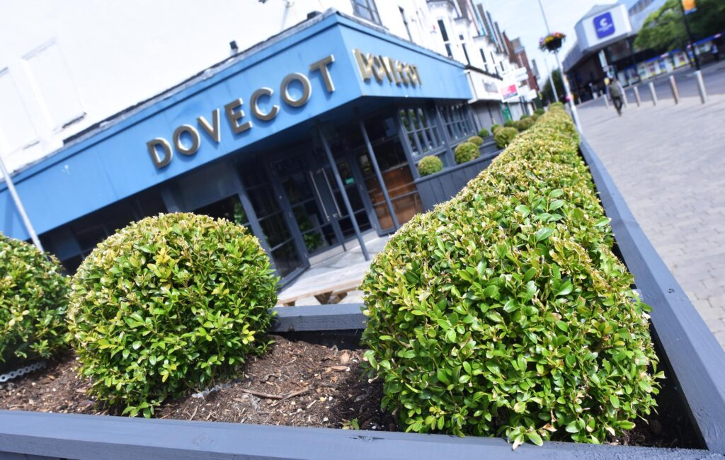 The Dovecot - Middlesbrough