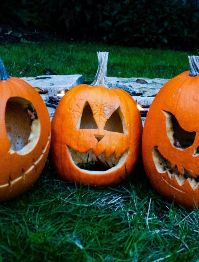 Halloween Trail and Pumpkin Picking